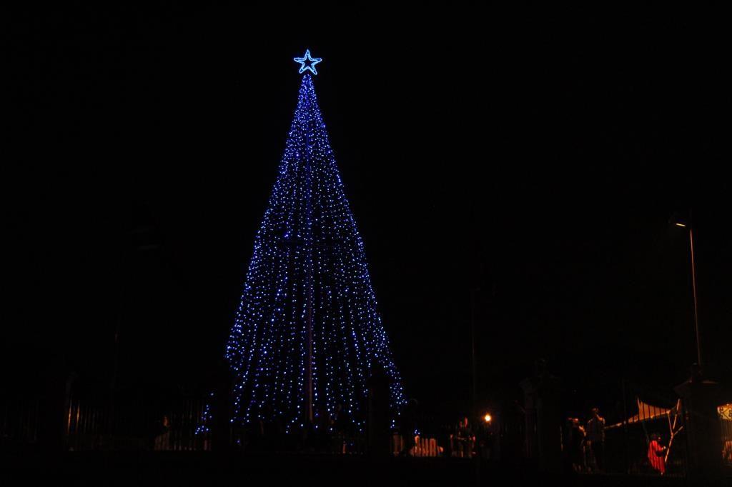 The Hospice Tree Of Light